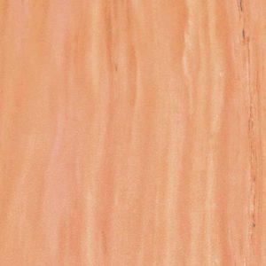 Маврийская ракушка
